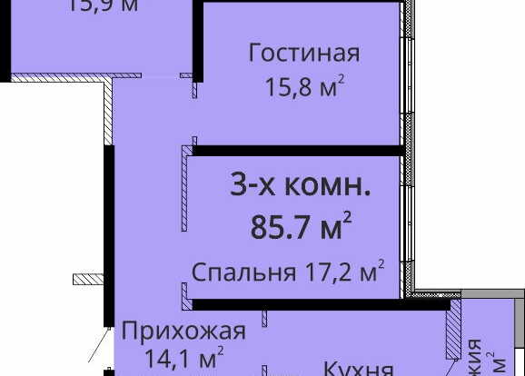 mandarin-all-plans-section-2-floor-14-24-flat-3.jpg